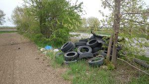 někdo si odložil hromadu pneumatik do křoví